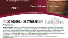 E' tempo diVendemmia. AllaTenuta Cavalier Pepe, a Sant'Angelo All'Esca, Avellino, ci si prepara con grande passione ad accogliere, nel migliore dei modi, tutti coloro che vorranno prendere parte attivamente a questo evento. Infatti, la Tenuta, oltre ad essere sempre aperta […]
